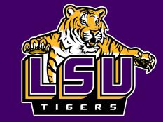 Let Us Cater Your LSU Football Party!