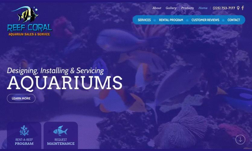 reef-coral Website Home